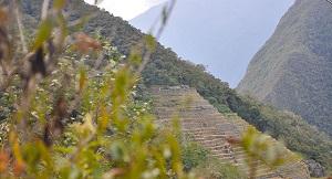 de Wiñaywayna, Inca Trail