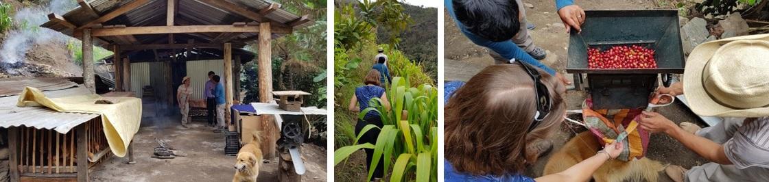Ervaar het leven van de lokale bevolking nabij Machu Picchu