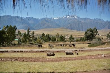 evaluatie rondreis Peru Familie de Rycke