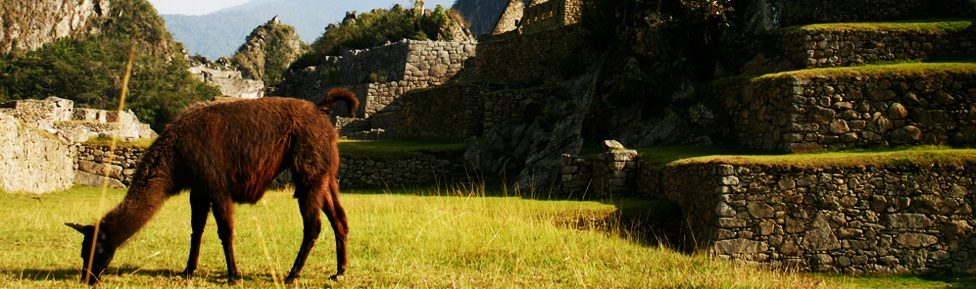 Rondreis Peru 2 weken