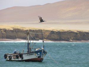 Paracas Reservaat